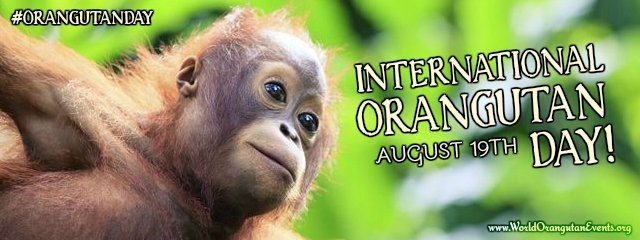 International Orangutan Events- Offical Event Poster- #OrangutanDay - World Orangutan Day