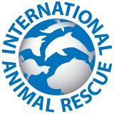 International Animal Rescue- World Orangutan Events