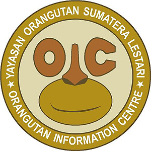 Orangutan Information Centre OIC- World Orangutan Events