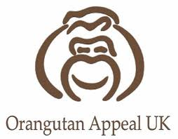 Orangutan Appeal UK- World Orangutan Events