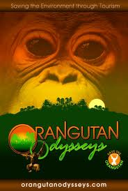 Orangutan Odysseys- World Orangutan Events