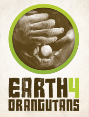Earth 4 Orangutans - World Orangutan Events
